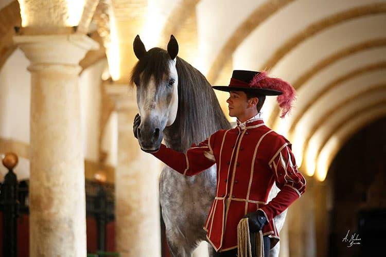 Escuela de equitación Córdoba Ecuestre