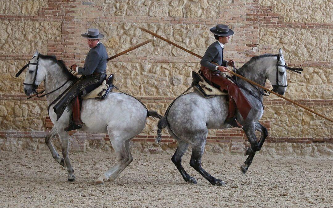 Caballos en Córdoba